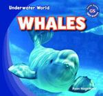 Whales - Ryan Nagelhout