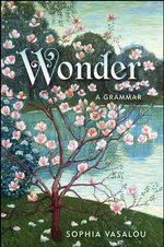 Wonder : A Grammar - Sophia Vasalou