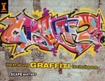 Graff 2 : Next Level Graffiti Techniques - Scape Martinez