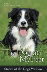 The Dog at My Feet : Stories of the Dogs We Love