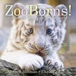 Zooborns! : Zoo Babies from Around the World - Andrew Bleiman