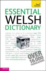 Essential Welsh Dictionary : Teach Yourself - Edwin C. Lewis