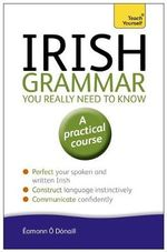 Irish Grammar You Really Need to Know : Teach Yourself - Eammon O'Donaill