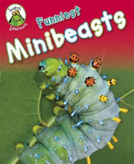 Funniest Minibeasts : Leapfrog Learners Series - Annabelle Lynch