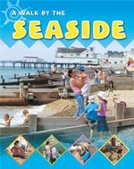 By the Seaside : A Walk By The Seaside - Sally Hewitt