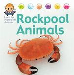 Nora the Naturalist's Animals : Rock Pool Animals: 4 - David West