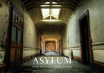 Asylum : Inside the Pauper Lunatic Asylums - Mark Davis