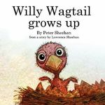 Willy Wagtail Grows Up - Peter Sheehan
