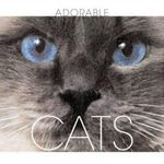 Cats : Adorable - Valeria. M De Fabianis