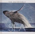 Sea : The Incredible - Valeria Manferto de Fabianis