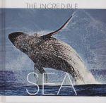 Sea : The Incredible - Valeria Manferto de Fabianis