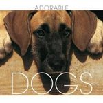 Dogs : Adorable - Valeria. M De Fabianis