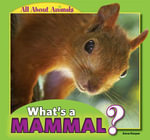 What's a Mammal? : All about Animals - Anna Kaspar