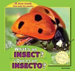 What's an Insect? / Que Es Un Insecto? : All about Animals / Todo Sobre Los Animales - Anna Kaspar