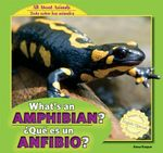 What's an Amphibian? / Que Es Un Anfibio? : All about Animals / Todo Sobre Los Animales - Anna Kaspar
