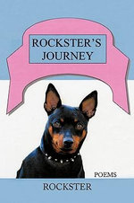 Rockster's Journey - Rockster