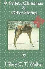 A Perfect Christmas & Other Stories - Hilary C T Walker