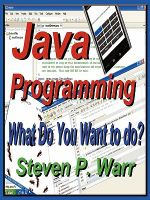 Java Programming : What Do You Want to Do? - Steven P. Warr