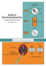 World of Nanobioengineering : Potential Big Ideas for the Future - Amin Elsersawi Ph.D