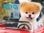 Boo : Little Dog in the Big City - J. H. Lee