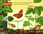 How Does A Seed Sprout? : And other questions about plants - Melissa Stewart