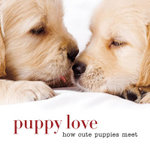 Puppy love : How cute puppies meet - Sterling Publishing Company