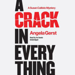 A Crack in Everything : A Susan Callisto Mystery - Angela Gerst