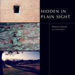 Hidden in Plain Sight - Moments of Beauty - Ian Temple Roberts