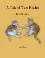 A Tale of Two Kitties -- Taj and Bodhi - John Ryan