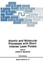 Atomic and Molecular Processes with Short Intense Laser Pulses : Volume 6 - Andre D. Bandruk