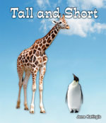 Tall and Short - Jane Katirgis