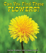 Can You Find These Flowers? - Carmen Bredeson