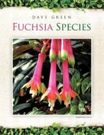 Fuchsia Species - Dave Green