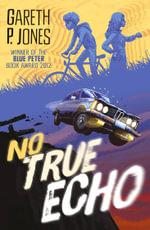 No True Echo - Gareth P. Jones