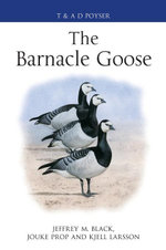 The Barnacle Goose - Jeffrey M. Black