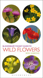 Pocket Guide To Wild Flowers - Bob Gibbons