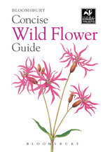 Concise Wild Flower Guide - Colin Emberson