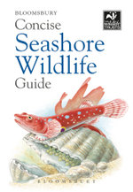 Concise Seashore Wildlife Guide - Bloomsbury Publishing