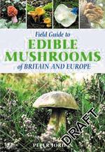 Field Guide to Edible Mushrooms of Britain and Europe - Peter David Jordan