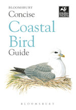 Concise Coastal Bird Guide - Bloomsbury Publishing