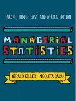 Managerial Statistics - Nicoleta Gaciu