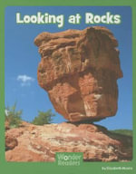 Looking at Rocks - Elizabeth Moore