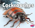 Cockroaches : Pebble Plus: Creepy Crawlers - Lisa J Amstutz