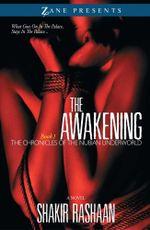 The Awakening : Book One of the Chronicles of the Nubian Underworld - Shakir Rashaan