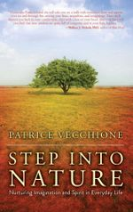 Step into Nature : Nurturing Imagination and Spirit in Everyday Life - Patrice Vecchione