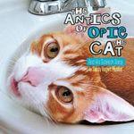 The Antics of Opie the Cat : And His Sidekick Daisy - Sandy Bogert Mueller