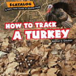 How to Track a Turkey - Norman Graubart