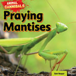 Praying Mantises - Sam Hesper