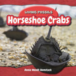 Horseshoe Crabs - Annie Hemstock