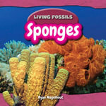 Sponges - Ryan Nagelhout